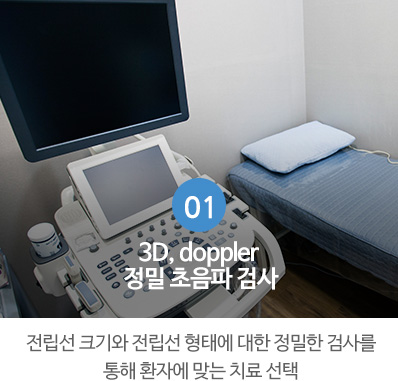 3D, 4D, doppler 정밀 초음파 검사