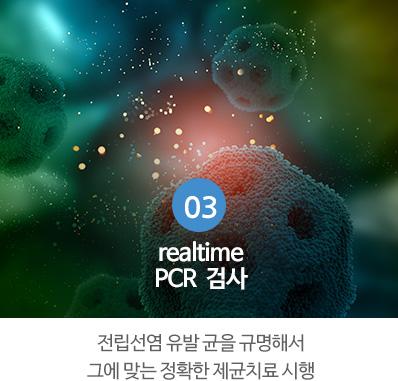 realtime PCR  검사